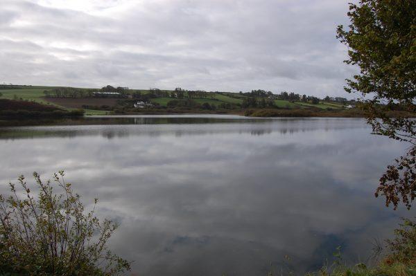 Shepperton Lake