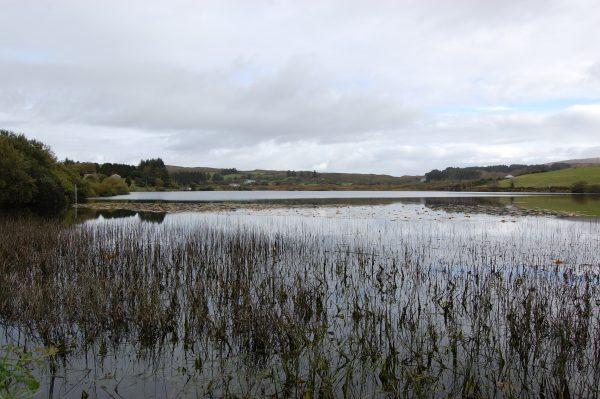 Lough Bofinne
