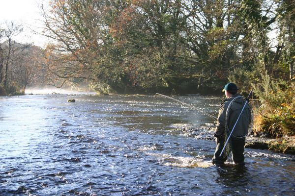 Early morning Fly Fishing on the River Eske.