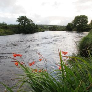 Owenea River - Jacks Stream on beat 7.