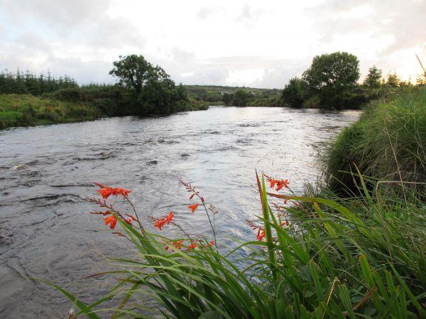 Owenea River - Jacks Stream on beat 7.